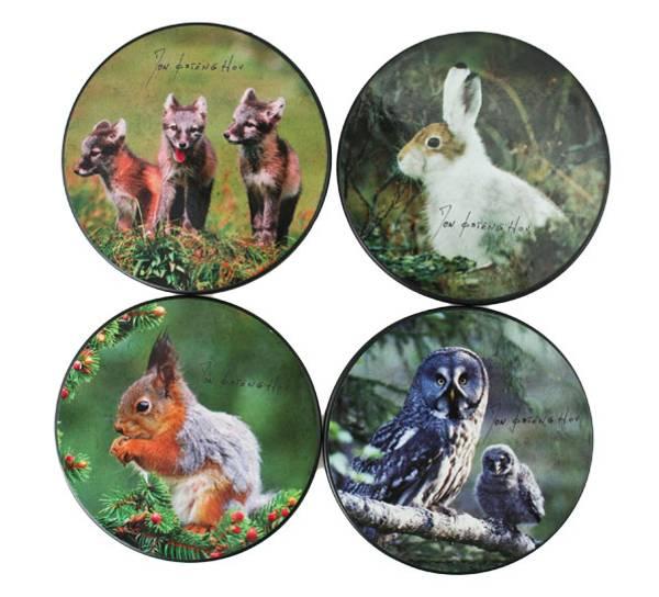 Bilde av Glassbrikker Villmarksserien dyremotiv.
