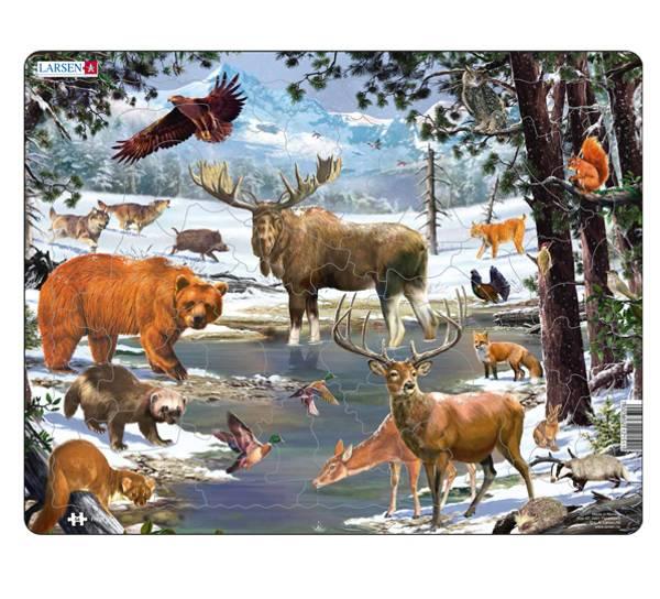 Bilde av Puslespill   Norsk skog  54 brikker