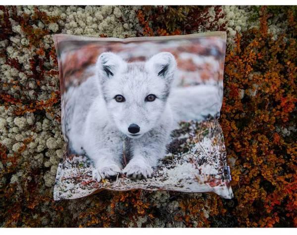 Bilde av Velourpute med fyll, rev, `Blikk i naturen`