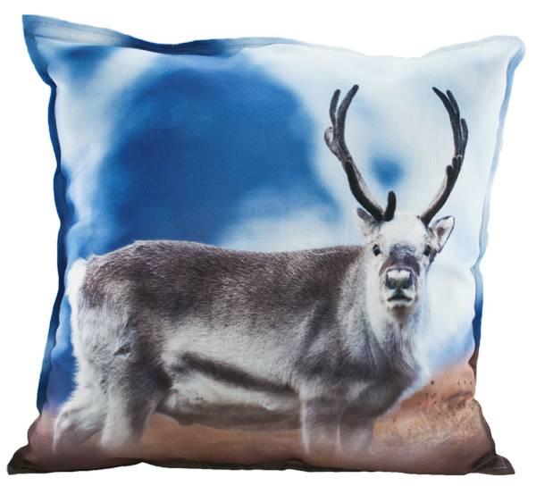 Bilde av Pute med fyll, reinsdyr i det blå